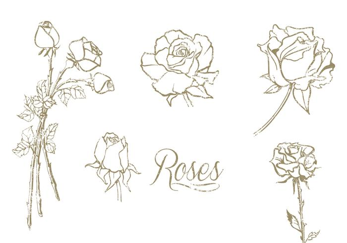 Hand Drawn Roses PSD Set