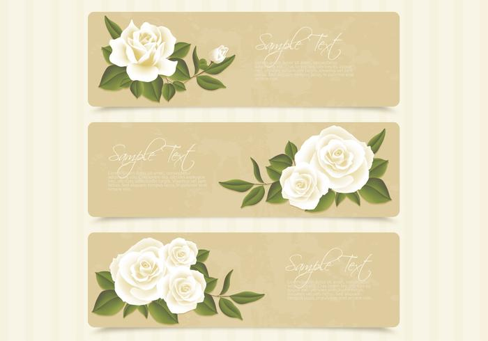 Retro White Roses Banner PSD Set