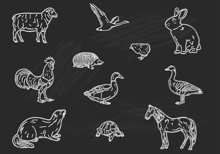 Chalk Drawn Animals Brushes