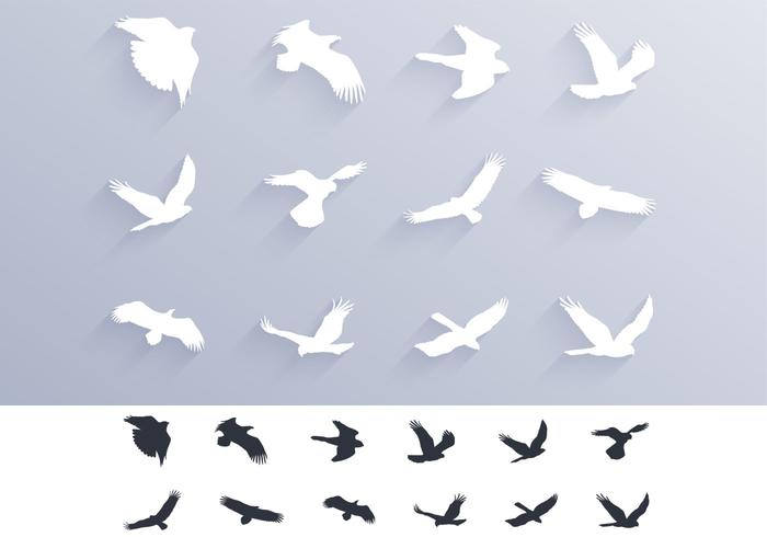 Birds of Pray Silhouettes Brushes