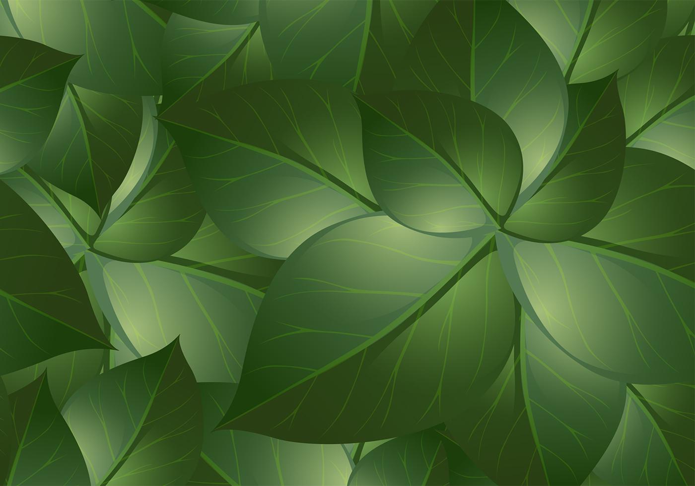 green leaf backgrounds