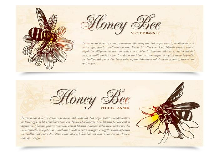 Honey Bee Banners PSD Set