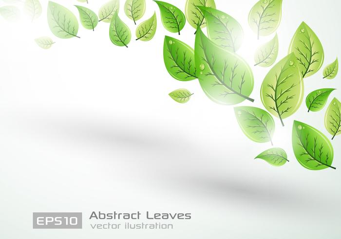 Leaf Background PSD