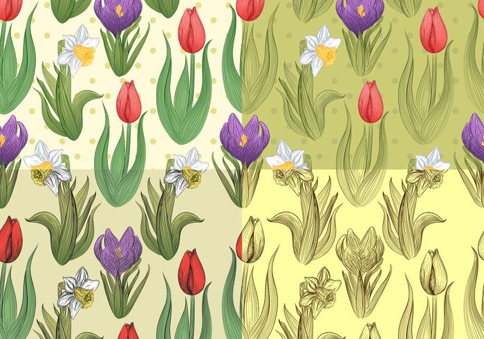 Seamless Tulip and Daffodil Patterns