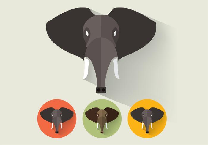 Portraits d'éléphants psd