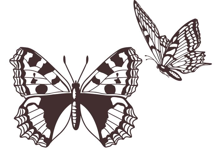 Cepillos libres de la mariposa
