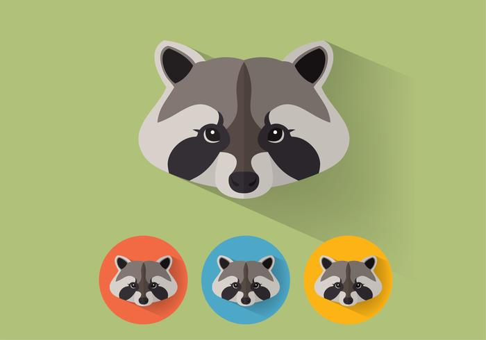 Raccoon PSD Portraits