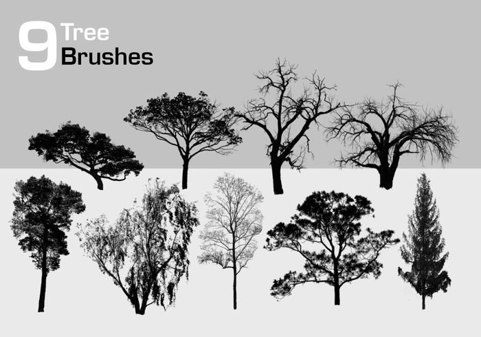 9 High Resolution Tree Brushes Free Photoshop Brushes At Brusheezy