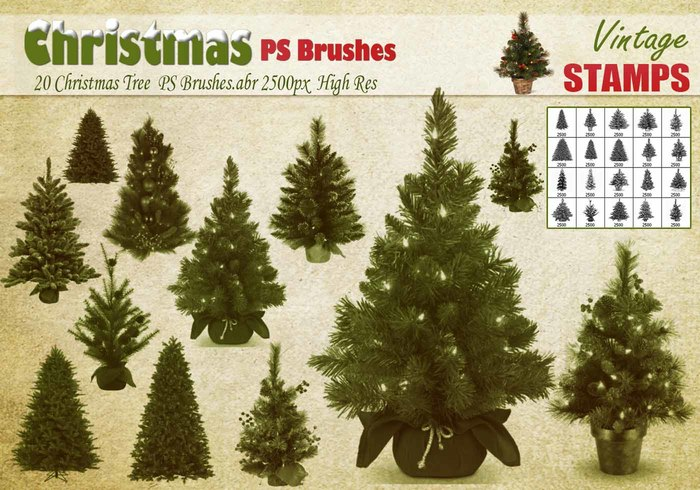 Brosses PS de Noël