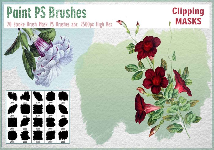 Stroke Brush Mask PS Brushes