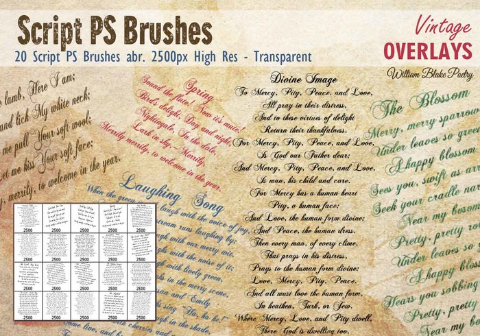 Vintage Script PS Brushes