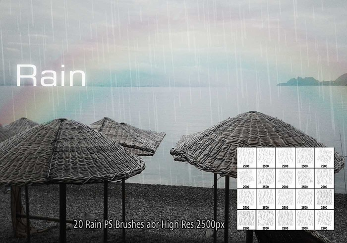 Rain PS Brushes abr