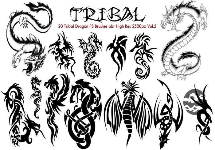 Tribal Dragon PS Bürsten Vol.5
