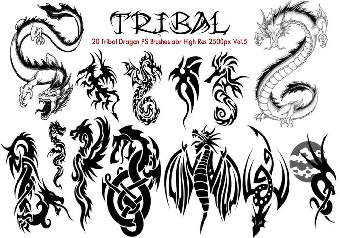 Dragon tribal brosses ps vol.5