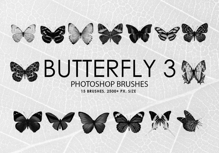 Free Butterfly Photoshop Brushes 3