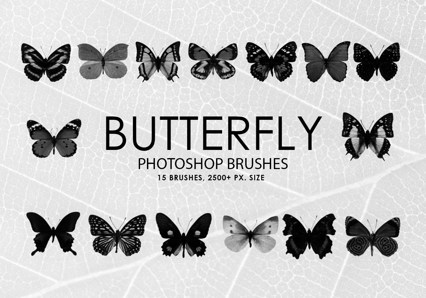 free butterfly photoshop brushes free photoshop brushes at