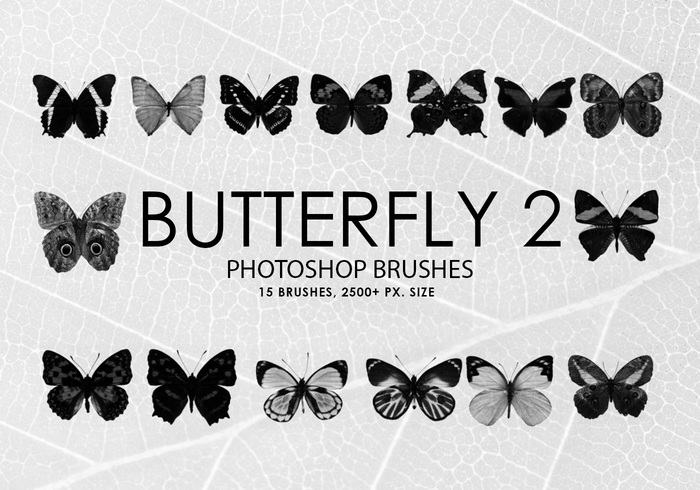 Gratis Butterfly Photoshop Borstar 2
