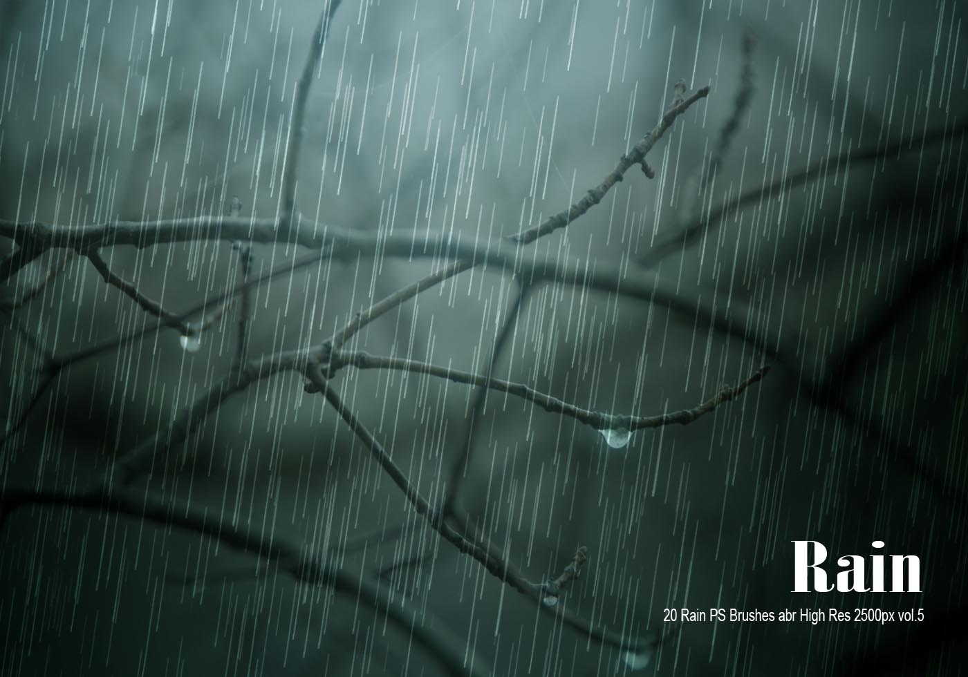 20 rain ps brushes abr vol 6