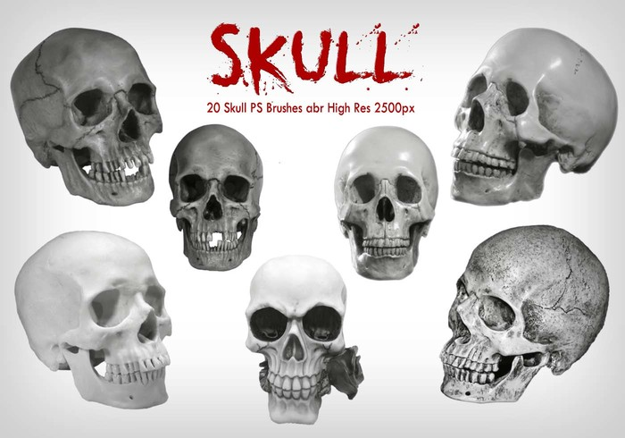 20 Skull PS Brushes abr vol.7