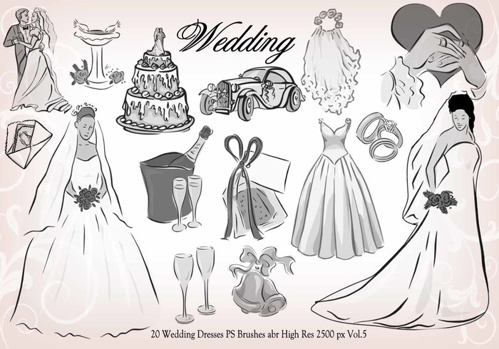 20 Wedding PS Brushes abr vol.5