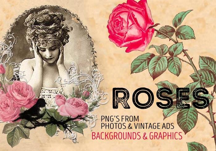 Rosas de fundo e gráficos