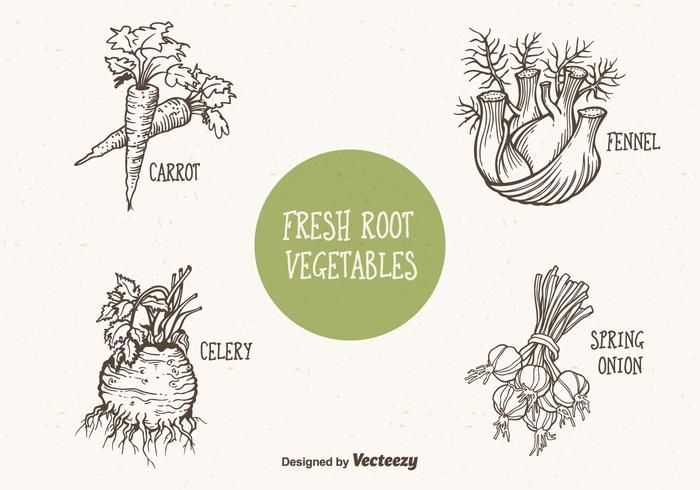 Doodle Drawn Root Vegetables Brushes