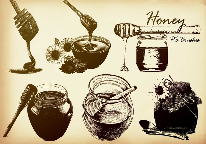 20 Honey PS Brushes abr.  vol.1
