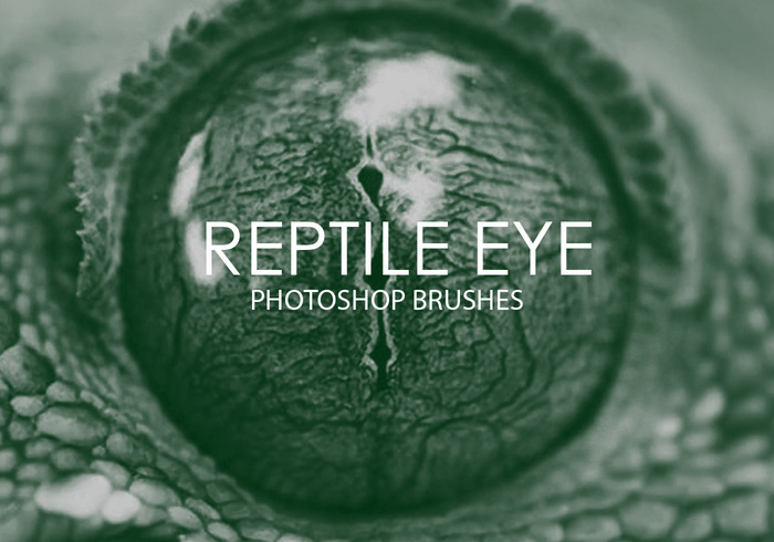 Free Reptile Eye Pinceles para Photoshop
