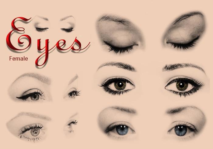 20 weibliche Augen Ps Bürsten abr.