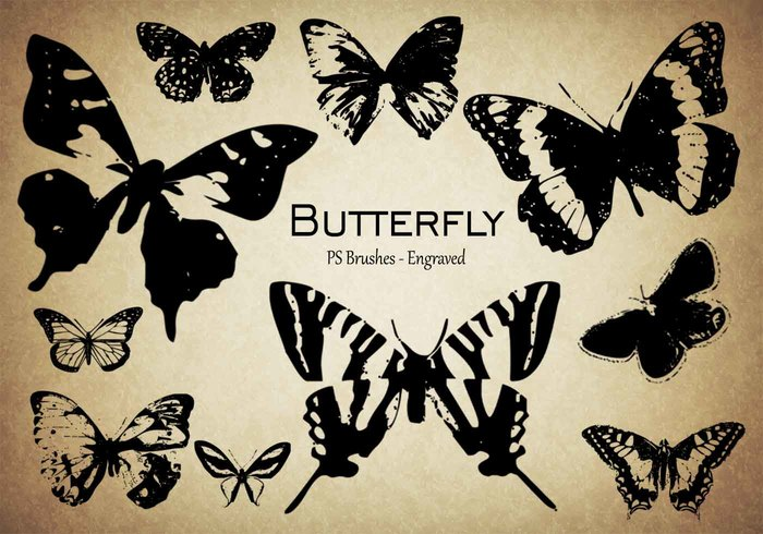 20 Butterfly PS Pinceles abr.Vol.9