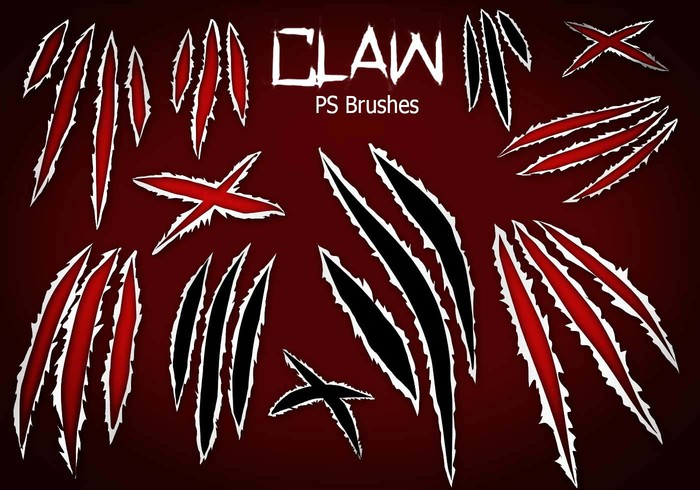 20 Claw Scratch PS Brushes abr. Vol.8