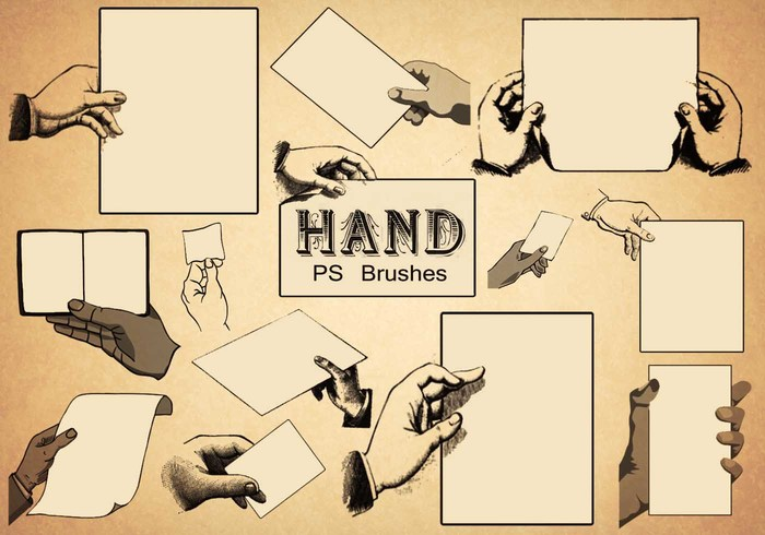 20 Hand PS Bürsten abr.Vol.8