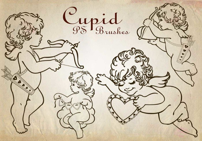 20 Cupid PS Bürsten abr. Vol. 2