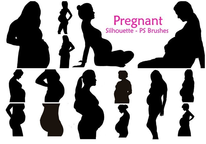 20 Pregnant Silhouette PS Brushes