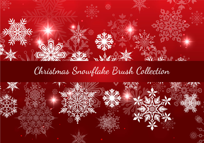 Jul Snowflake Brush Collection