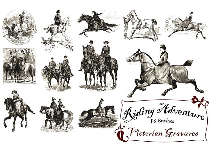 20 Riding Adventure PS Brushes abr. Vol.9