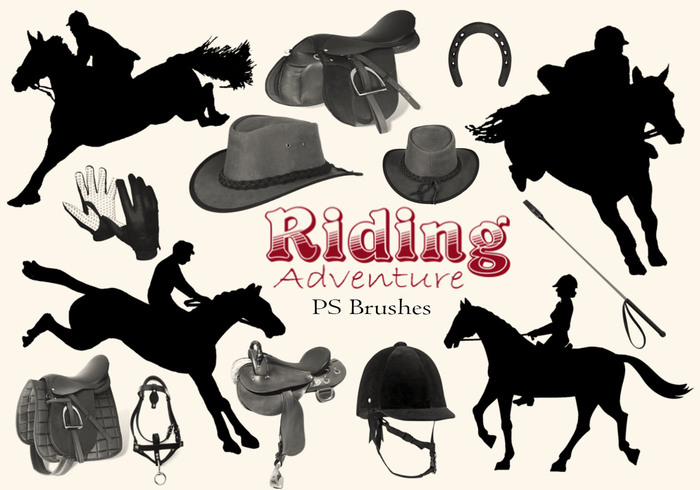 20 Bicyclettes de vélo d'aventure Riding abr. Vol.8