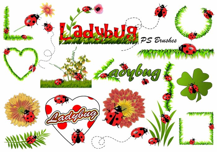 20 Ladybug PS Brushes