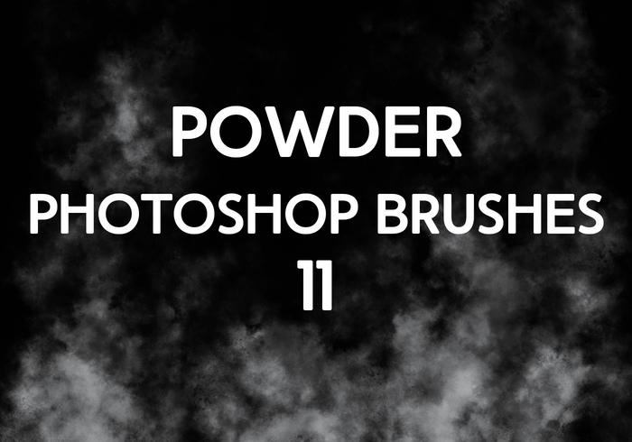 Powder Brushes 11