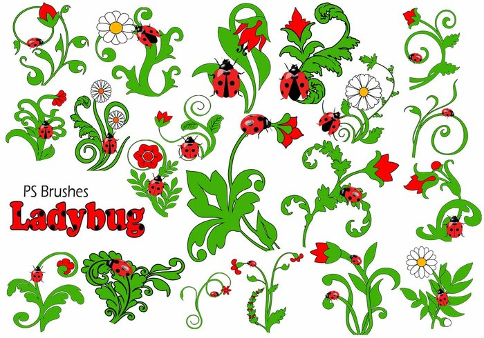 20 Ladybug PS Brushes abr.Vol.9