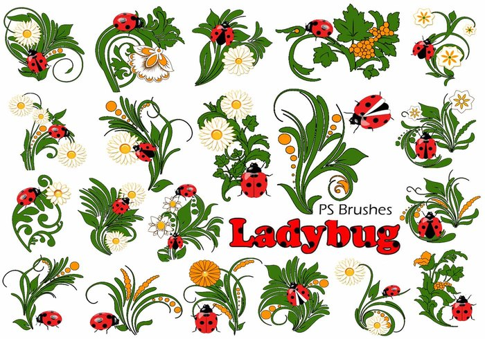 20 Ladybug PS Brushes abr.Vol.10