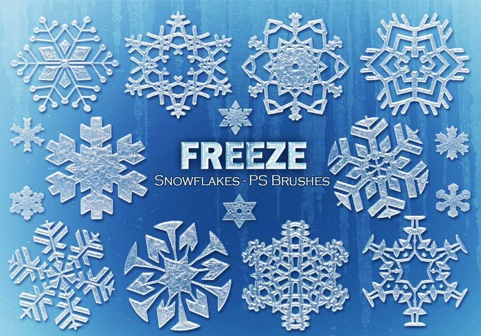 20 Freeze Snowflakes PS Pinceles abr. Vol.11