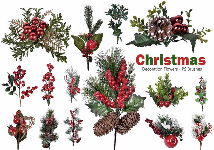 20 Christmas Flower PS Brushes abr. Vol.15