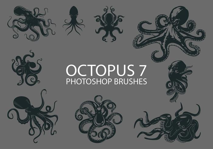 Free Octopus Photoshop Brushes 7