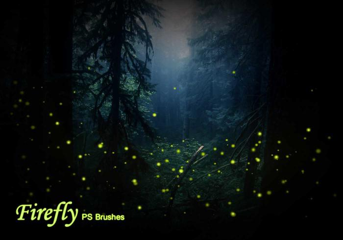 20 Firefly PS Brushes abr vol.1