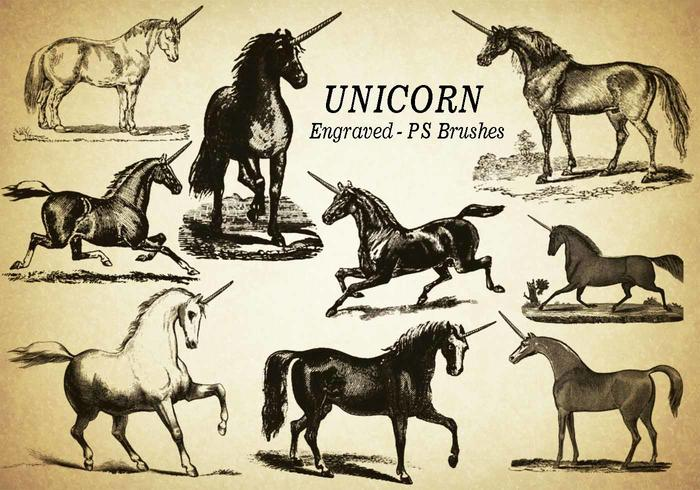 20 Unicorn Engraved PS Brushes abr. Vol.5