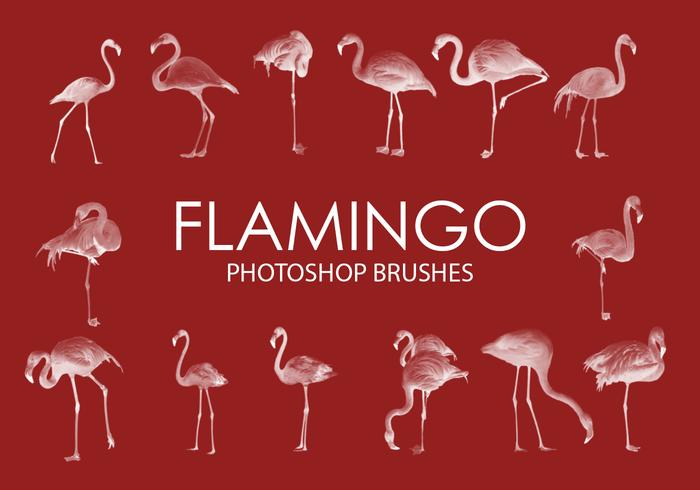 Pincéis do Flamingo Photoshop