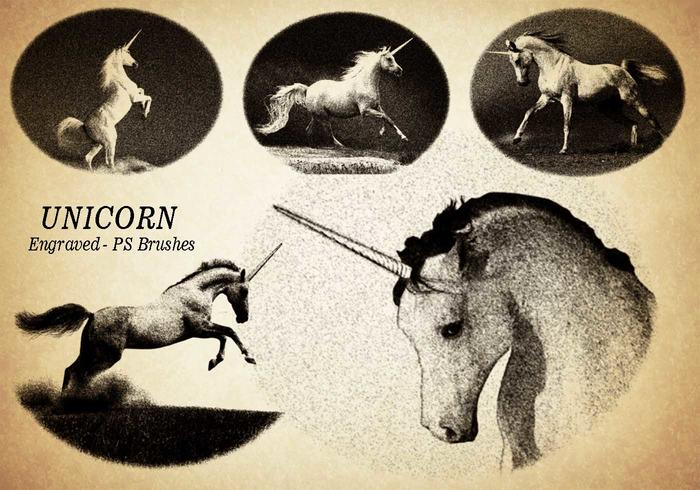 20 Unicorn Engraved PS Brushes abr. Vol.6