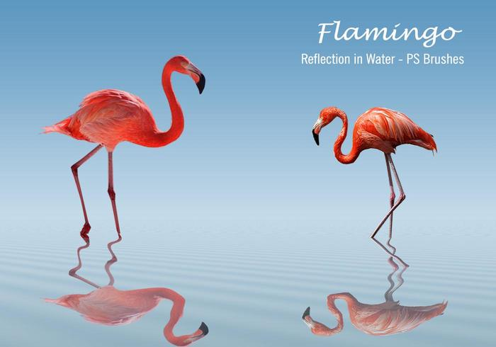 20 Flamingo PS Bürsten.abr vol.3