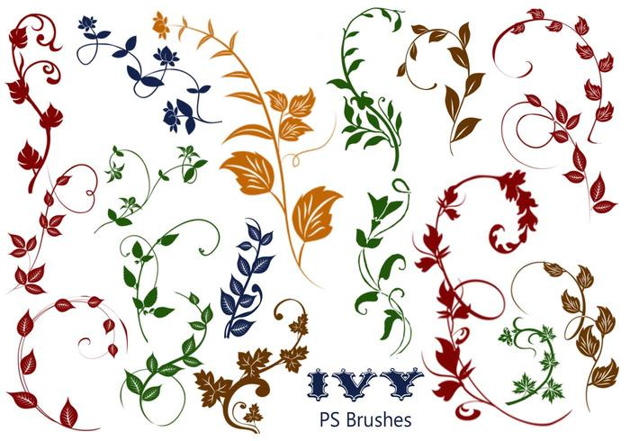 20 Ivy PS Brushes abr vol.5